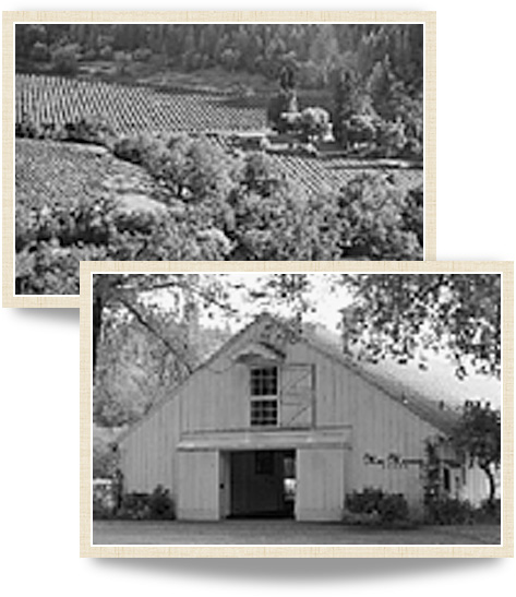 Historical photographys of MacMurray Estate Vineyards from the early 1900s